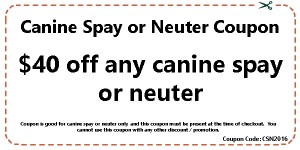 Canine Spay or Neuter Coupon